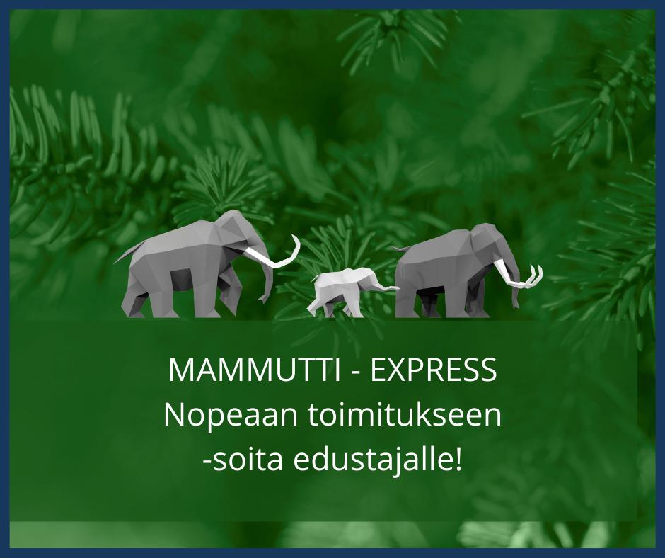 MAMMUTTI – EXPRESS